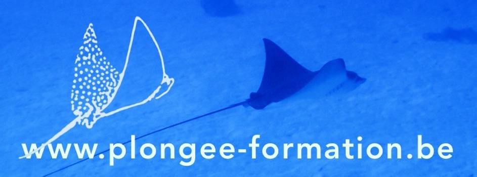 banner plongee